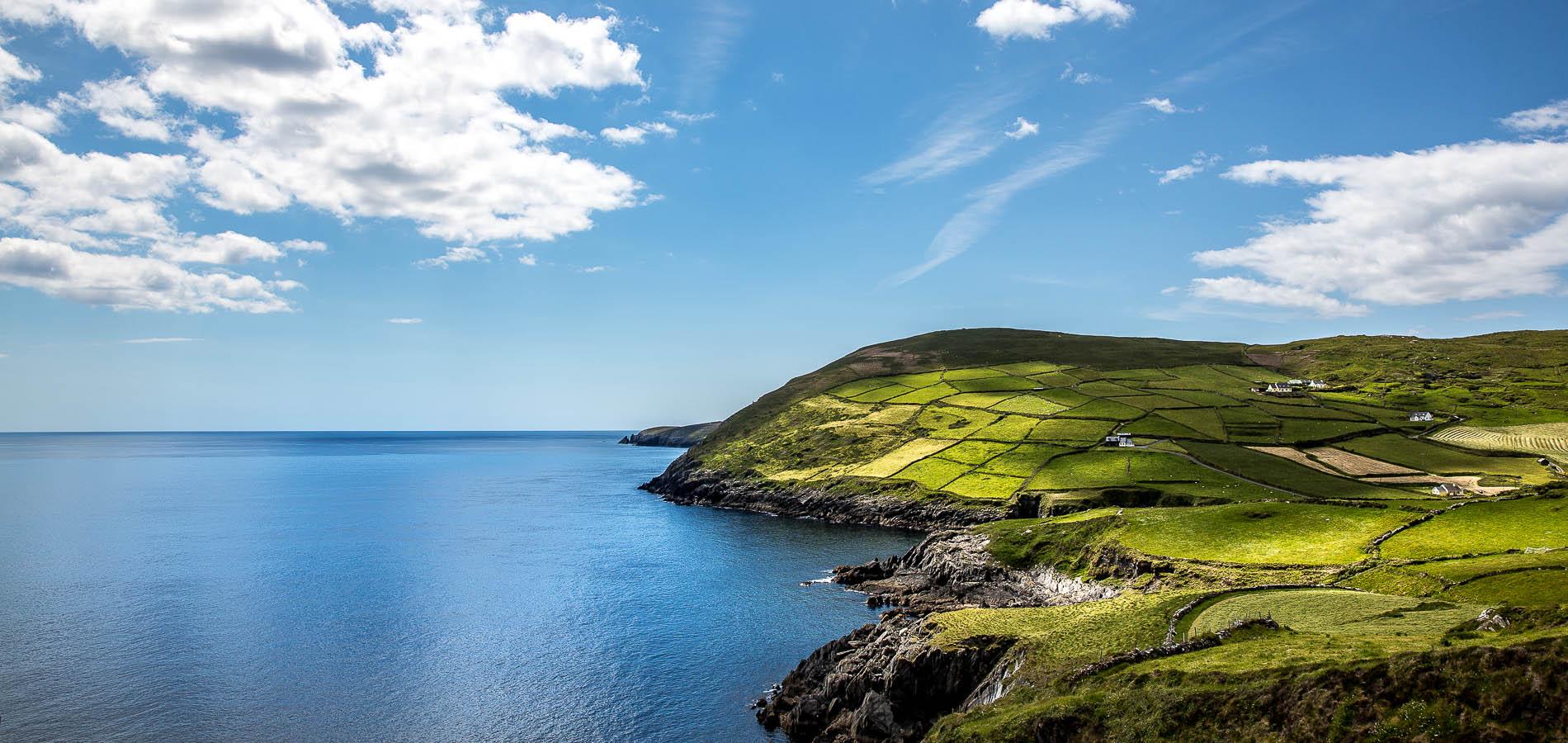 Lambs Head, Irland